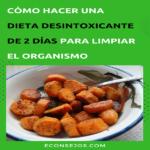 Dieta desintoxicante de los 2 días ¡conócela!