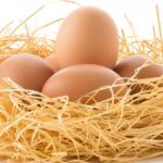 ¿EL huevo engorda? ¿Cómo comerlo correctamente?