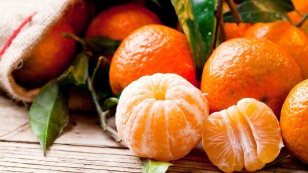 la mandarina engordan 1