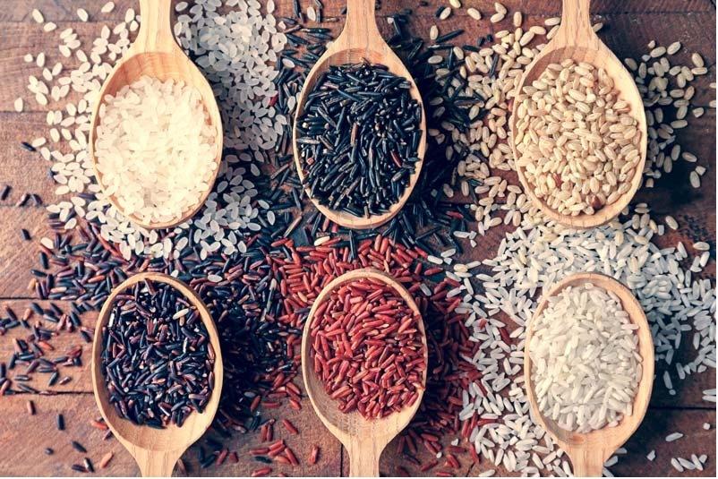 el-arroz-engorda-2